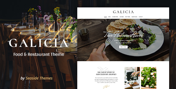 Galicia Restaurant WordPress Theme Web Design Tips