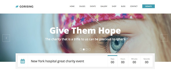 10 GoRising non-profit WordPress theme