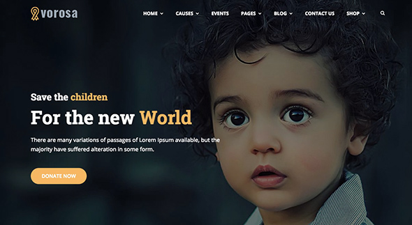 21 Vorosa non-profit WordPress theme