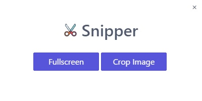 Building a Snipping Tool with Electron, React and Node js - Web
