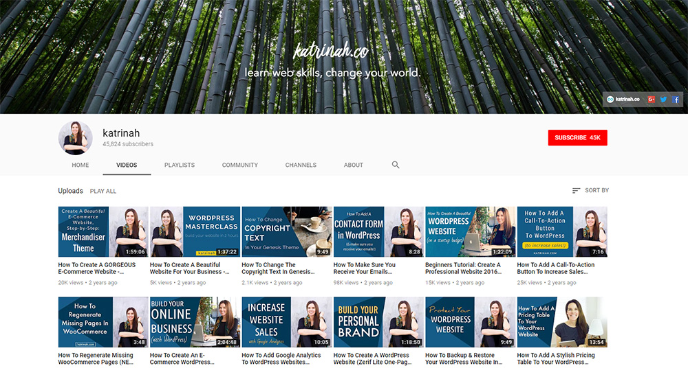 Top 12 YouTube Channels To Learn About WordPress - Web