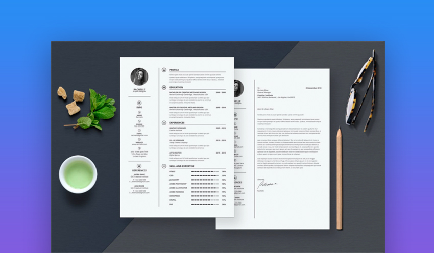 20 best contemporary  new styles  resume templates  for