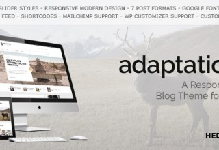 Adaptation - a Responsive Blog Theme for WordPress
